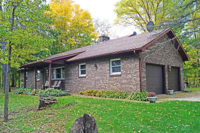Eagle Single Family Home For Sale: 12300 S Grange Road