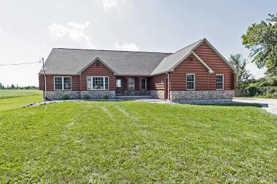 Grand Ledge Single Family Home For Sale: 2654 E St. Joe Highway