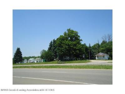 Commercial For Sale: 1653 Lansing Road