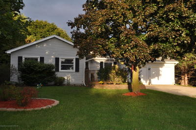 Sunfield Single Family Home For Sale: 10776 Sunfield Road
