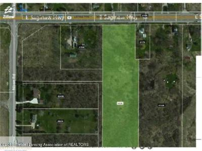 Grand Ledge Residential Lots & Land For Sale: 7172 E Saginaw Highway