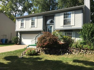 Lansing Single Family Home For Sale: 211 Olympia Drive