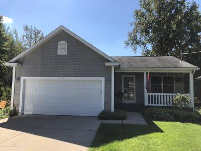 Lansing Single Family Home For Sale: 2240 Luwanna Drive