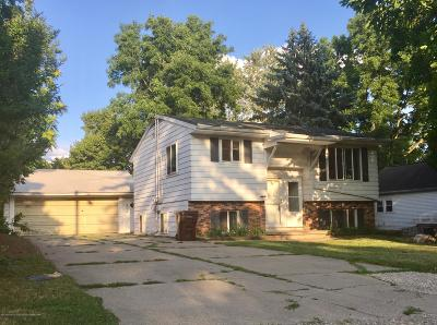 Lansing Multi Family Home For Sale: 335 S Grace Street