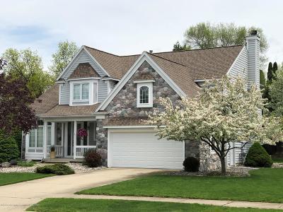 Haslett Single Family Home For Sale: 5618 Wild Iris Lane