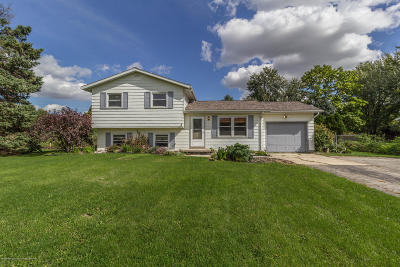 Grand Ledge Single Family Home For Sale: 13600 Benton Road
