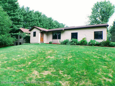 Haslett Single Family Home For Sale: 6494 Zimmer Road