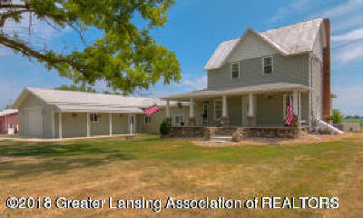 Sunfield Single Family Home For Sale: 12670 N Ionia Road