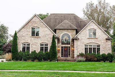 Mason Single Family Home For Sale: 461 Raindrop Court