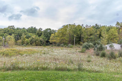 Charlotte Residential Lots & Land For Sale: 2271 Pinch Highway