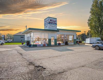 Commercial For Sale: 5245 N Grand River Avenue