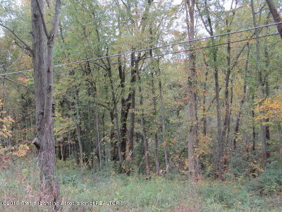 Haslett Residential Lots & Land For Sale: V/L E State Road