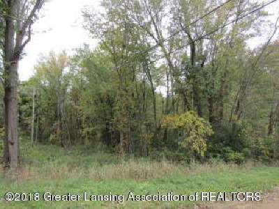 Haslett Residential Lots & Land For Sale: 16080 Peacock Road