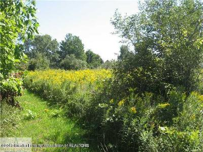 St. Johns Residential Lots & Land For Sale: Lot B W Gratiot County Line Road
