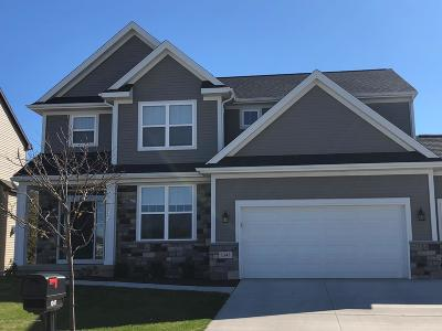 Williamston Single Family Home For Sale: 3148 Pawapi Lot H Lane
