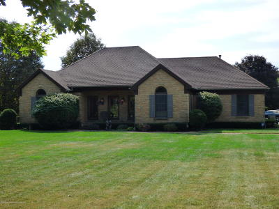 Dewitt MI Single Family Home For Sale: $369,000