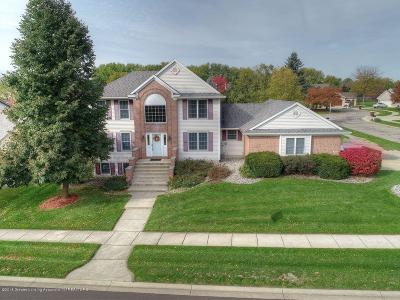 Grand Ledge Single Family Home For Sale: 910 Oneida Woods Trail