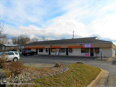 Commercial For Sale: 1549 Haslett Road