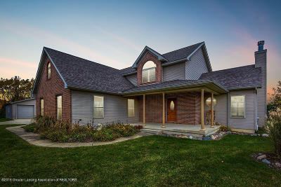 Westphalia Single Family Home For Sale: 4541 S Wright Road