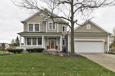 Grand Ledge Single Family Home For Sale: 11304 Carousel Drive