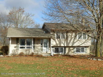 Fowler Single Family Home For Sale: 5190 W South County Line Road