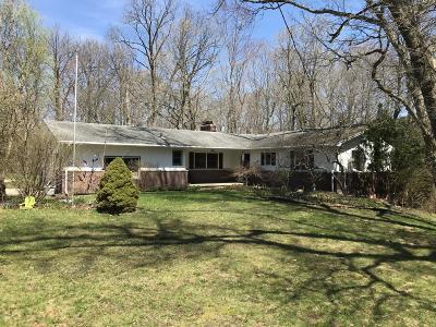 Williamston Single Family Home For Sale: 4450 Congdon Drive