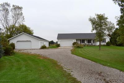 Mason Single Family Home For Sale: 341 S Eifert Road