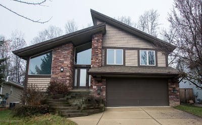Haslett Single Family Home For Sale: 16814 Meadowbrook Drive
