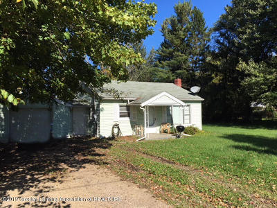 Lansing Single Family Home For Sale: 11799 W Jolly Road