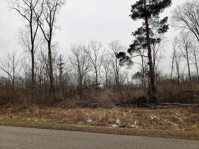 Williamston Residential Lots & Land For Sale: 3101 Pawapi Lane A