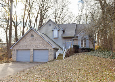 Lansing Single Family Home For Sale: 5221 River Ridge Drive