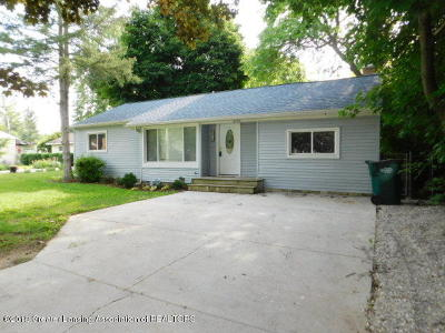 Lansing Single Family Home For Sale: 3012 Andrew Avenue