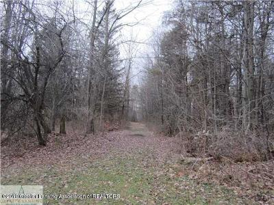 Dewitt Residential Lots & Land For Sale: 12440 Old U.s. 27