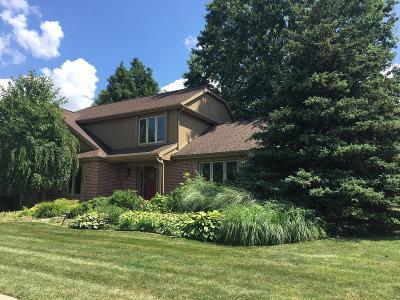 Okemos Single Family Home For Sale: 1967 Birch Bluff Drive