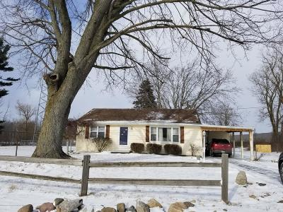 Lansing Single Family Home For Sale: 4508 W Mt. Hope Highway