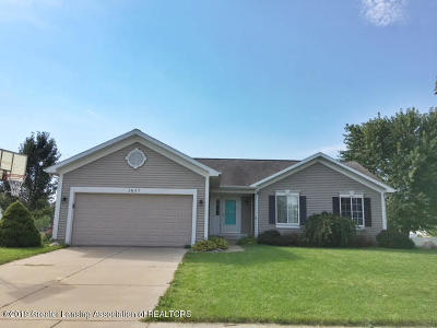 Lansing Single Family Home For Sale: 3825 Farnsworth Drive