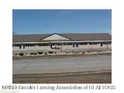 Commercial Lease For Lease: 1699 Lansing Road