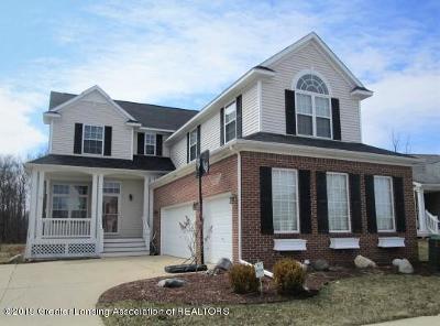 Grand Ledge Single Family Home For Sale: 6794 Castleton
