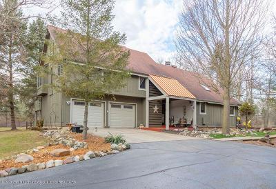 Williamston Single Family Home For Sale: 237 E Sherwood Road