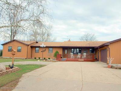 St. Johns Single Family Home For Sale: 1320 E Jason Road