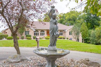 Dimondale Single Family Home For Sale: 10475 Hartland Drive