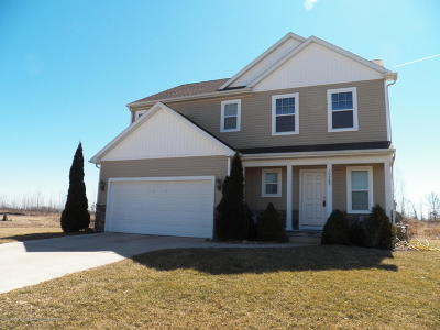 Grand Ledge Single Family Home For Sale: 10569 Knockaderry Drive