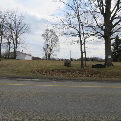 Charlotte Residential Lots & Land For Sale: 2180 E Spicerville Highway