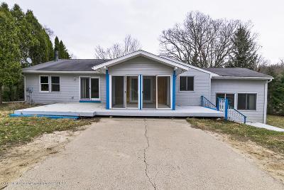Williamston Single Family Home For Sale: 6421 Lounsbury Road