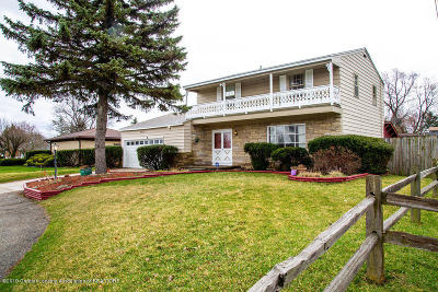 Lansing Single Family Home For Sale: 4433 W Michigan Avenue