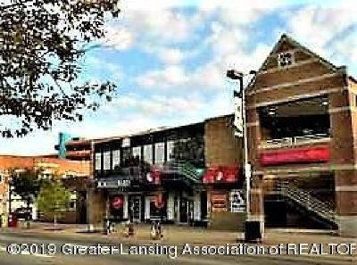 Commercial Lease For Lease: 507 1/2 E Grand River (2nd Floor) Avenue