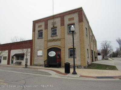 Commercial For Sale: 223 N Nelson Street