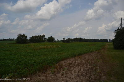 Charlotte Residential Lots & Land For Sale: 2484 Carlisle Highway