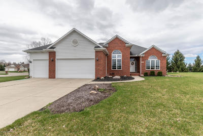 Dewitt Single Family Home For Sale: 12780 Paradise Drive