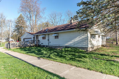 Lansing Single Family Home For Sale: 2901 Young Avenue
